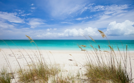 the turks: Beautiful beach at Providenciales island in Turks and Caicos Stock Photo