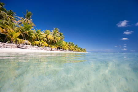 polynesia: Beautiful beach at little tropical island in French Polynesia