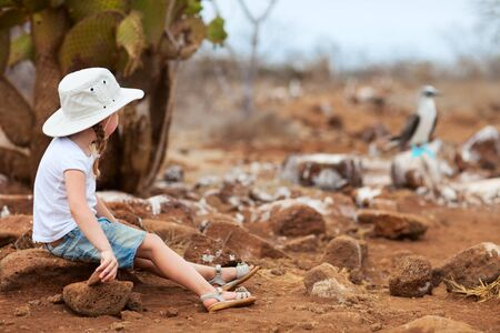 Little girl looking at blue footed booby on Galapagos North Seymour island Stock Photo - 17543683