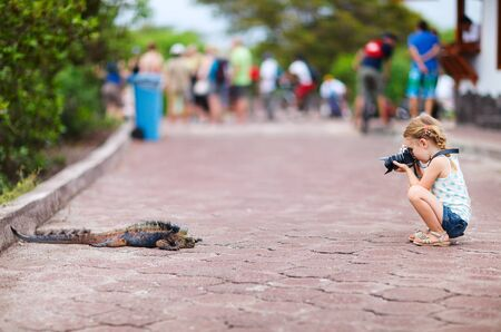 Adorable little girl photographing marine iguana Stock Photo - 17603590