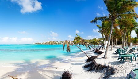 anguilla: Beautiful beach framed with palms and seaside cafe on Caribbean island of Anguilla
