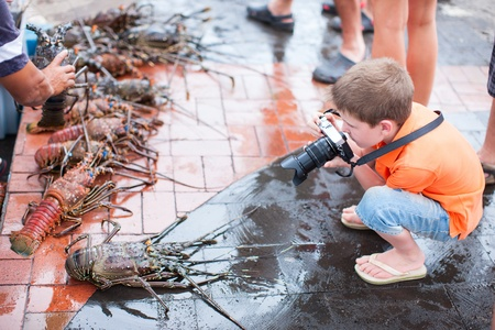 langouste: Cute little boy photographing at seafood market Stock Photo