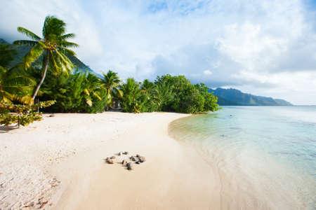 Plage sur l'île de Moorea en Polynésie française Banque d'images