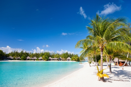 Beautiful beach on Bora Bora island in French Polynesia photo