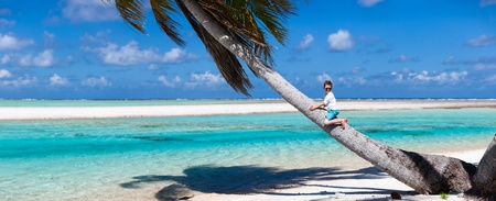 Little boy sitting on a palm at exotic beach photo