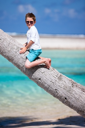 Little boy sitting on a palm tree photo