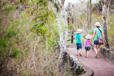 ecotourism: Back view of mother and two kids hiking in a park