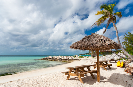 Parasols de chaume tropicales sur une belle plage des Caraïbes Banque d'images - 25715676