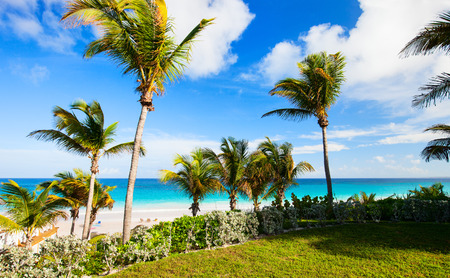 港島バハマの美しい熱帯ビーチ 写真素材