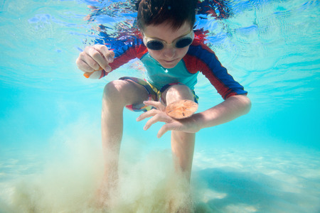 sand dollar: Cute little boy swimming underwater in tropical sea with sand dollar