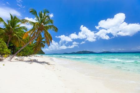 Vacker tropisk strand med palmer, vit sand, turkos havsvatten och blå himmel vid Tortola, Brittiska Jungfruöarna i Karibien Stockfoto