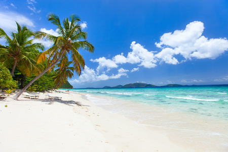 Vacker tropisk strand med palmer, vit sand, turkos havsvatten och bl� himmel vid Tortola, Brittiska Jungfru�arna i Karibien