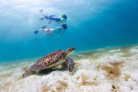 Undervattensfoto av familjen mor och son snorkling och simning med Hawksbill havssk�ldpadda