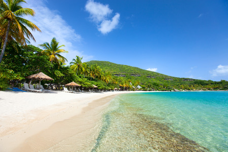 Beautiful tropical beach with palm trees, white sand, turquoise ocean water and blue sky at British Virgin Islands in Caribbean Stock Photo