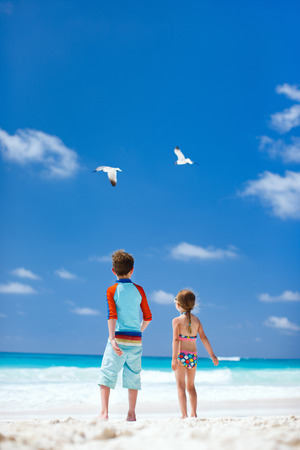 Two little kids and a couple of seagulls at beach photo