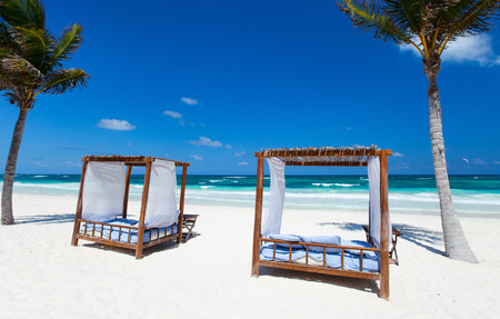 Beach beds among palm trees at Caribbean coast photo