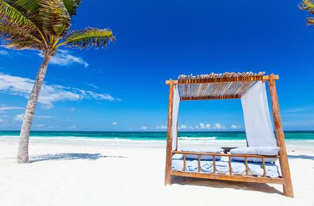 Beach bed among palm trees at Caribbean coast photo
