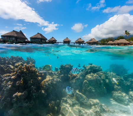 tahiti: Beautiful coral garden under over the water bungalows in French Polynesia Stock Photo