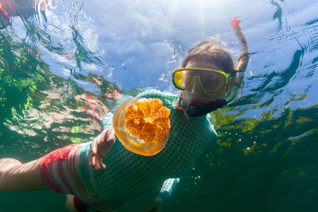 palau: Underwater photo of tourist woman snorkeling with endemic golden jellyfish in lake at Palau. Snorkeling in Jellyfish Lake is a popular activity for tourists to Palau. Stock Photo