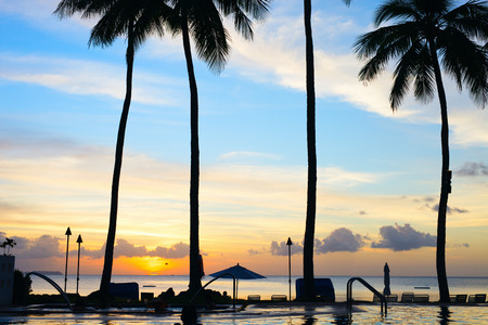 palau: Beautiful sunset on tropical beach with palm silhouettes Stock Photo
