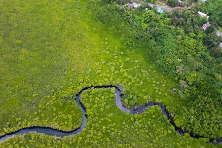 Flygfoto oa gr�n mark och liten flod p� Palau huvud�n