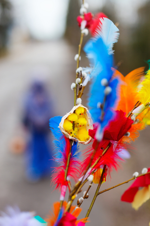 palm sunday: Pussy willow branches decorated with colorful feathers for Easter palm Sunday traditional celebration in Finland