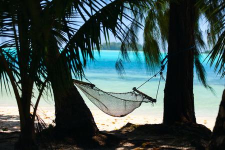 열 대 해변에서 해먹과 팜 나무