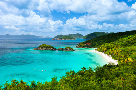 island paradise: Aerial view of picturesque Trunk bay on St John island, US Virgin Islands considered by many as most beautiful beach in Caribbean