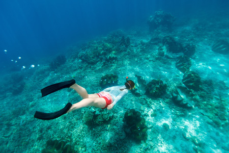 free diving: Underwater photo of woman snorkeling and free diving in a clear tropical water at coral reef with giant clams