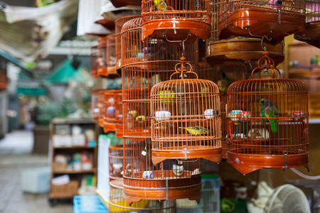 bird cage: Birds in cages for sale at Birds market, Kowloon Hong Kong, popular tourist destination. Stock Photo