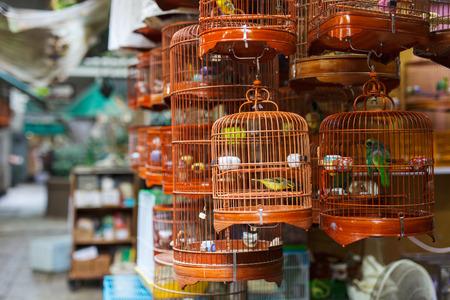 F�glar i burar f�r f�rs�ljning p� f�glar marknaden, Kowloon Hongkong, popul�rt turistm�l. Stockfoto