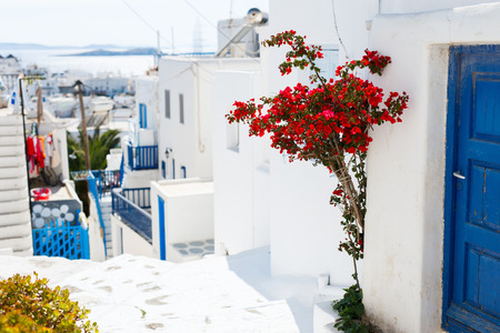 mykonos: Typical greek traditional village with white walls and colorful doors, windows and balconies on Mykonos Island, Greece, Europe