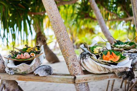 south pacific: Close up of some local south pacific origin food served in giant shells