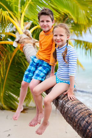 little boys: Brother and sister enjoying time at tropical beach sitting on hanging palm Stock Photo