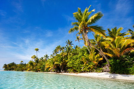 south pacific ocean: Stunning tropical island with palm trees, white sand, turquoise ocean water and blue sky at Cook Islands, South Pacific