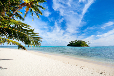 island paradise: Beautiful tropical beach with palm trees, white sand, turquoise ocean water and blue sky at Cook Islands, South Pacific