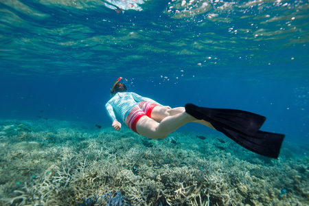 unrecognisable person: Underwater photo of woman snorkeling and free diving in a clear tropical water at coral reef