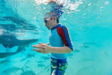 boy kid: Little boy swimming underwater with nurse sharks and fish