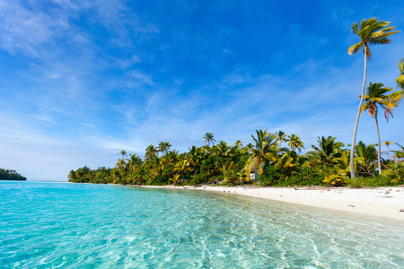 ocean water: Stunning tropical Aitutaki One Foot island with palm trees, white sand, turquoise ocean water and blue sky at Cook Islands, South Pacific