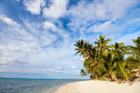 south pacific: Beautiful tropical beach with palm trees, white sand, turquoise ocean water and blue sky at Cook Islands, South Pacific
