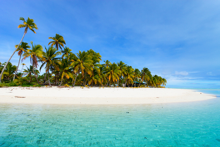 Prachtige tropische Aitutaki One Foot eiland met palmbomen, wit zand, turquoise oceaanwater en blauwe hemel bij de Cook Eilanden, Stille Zuidzee