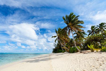 쿡 제도, 남태평양 야자수, 하얀 모래, 청록색 바다 물과 푸른 하늘 아름 다운 열 대 해변