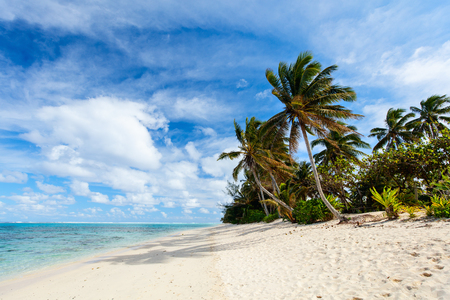 Beautiful tropical beach with palm trees, white sand, turquoise ocean water and blue sky at Cook Islands, South Pacific Stok Fotoğraf - 48547967