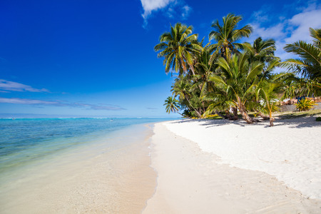 Vacker tropisk strand med palmer, vit sand, turkost hav vatten och blå himmel på Cooköarna, Oceanien Stockfoto