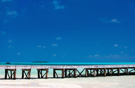 paradise bay: Perfect white sand beach and turquoise tropical ocean