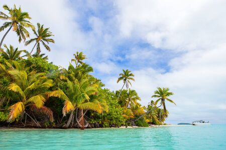 south pacific ocean: Stunning tropical island with palm trees, white sand and turquoise ocean water at Cook Islands, South Pacific Stock Photo