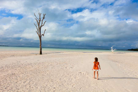 lone  tree: Lone tree most photographed on Harbour Island, Bahamas with little girl tourist walking around