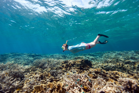 free diving: Underwater photo of woman snorkeling and free diving in a clear tropical water at coral reef