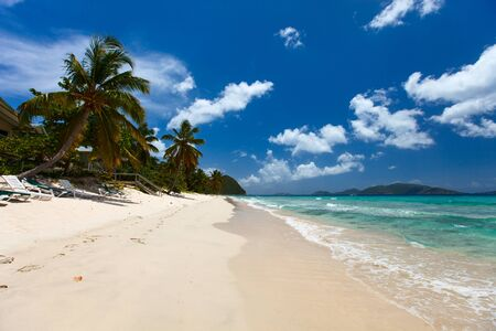 virgin islands: Beautiful tropical beach with palm trees, white sand, turquoise ocean water and blue sky at Tortola, British Virgin Islands in Caribbean