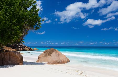 la digue: Idyllic tropical beach on La Digue island at Seychelles